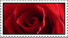 red rose stamp by thebluemaiden