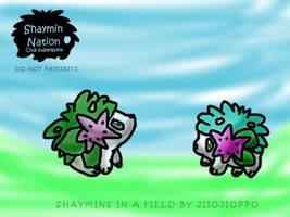 Shaymin in a field DO NOT FAV