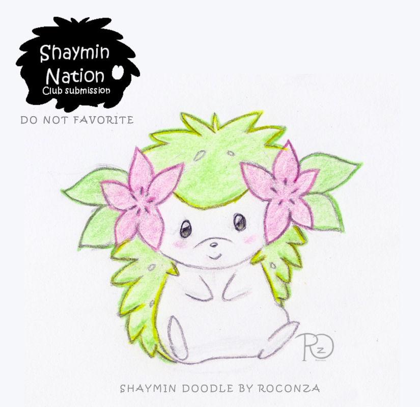 Shaymin Doodle DO NOT FAV