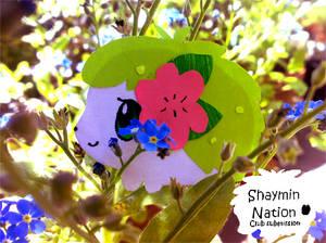 Paper Shaymin- DO NOT FAV
