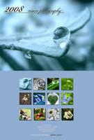 Macro calendar 2008 by blessedchild