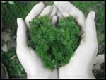 My dear earth by blessedchild