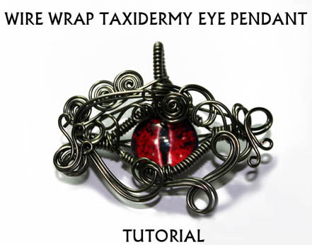 Wire Wrap Taxidermy Eye Pendant Tutorial by Create-A-Pendant