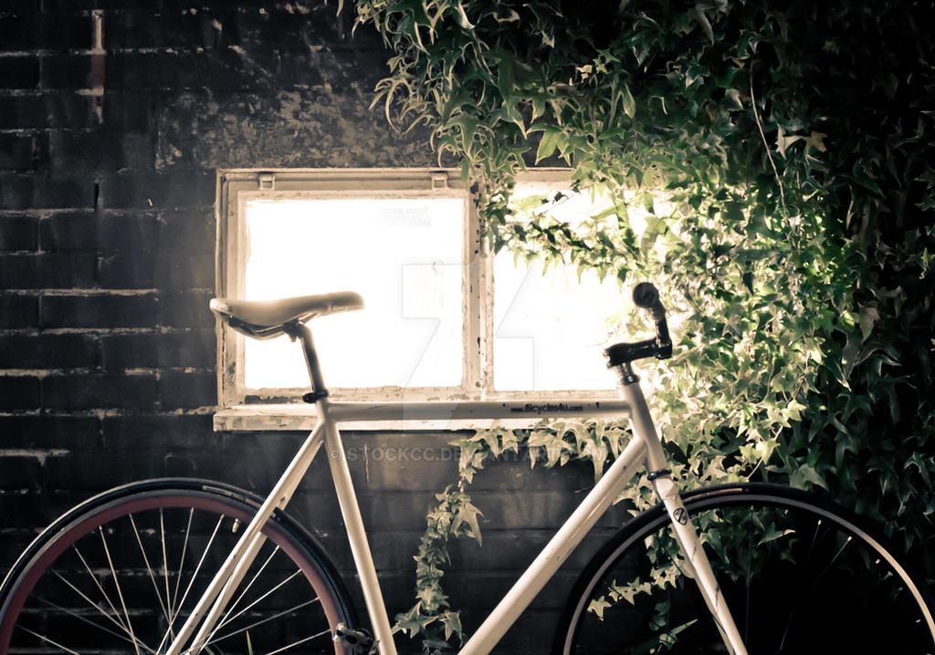 Fixie Bike Wallpaper By StockCC