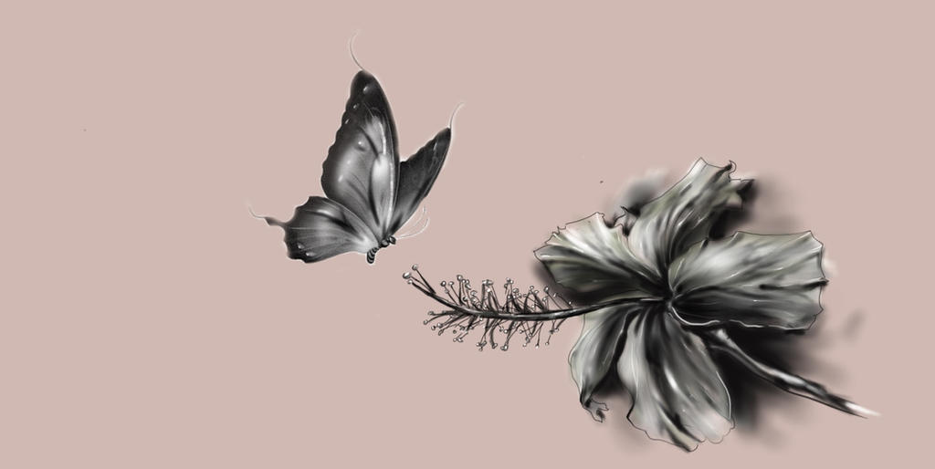 Motyl1 by raku85