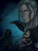 Dragon Age Origins - Crows by Lyshantia