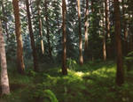 Forest Light painting