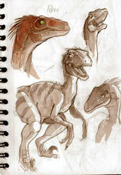 Dinosaurs sketches part 02. by VanOxymore