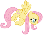 Fluttershy : Stare incoming