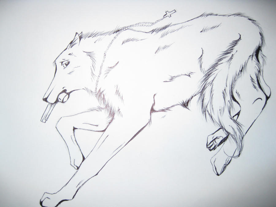 Wolf Character Drawing By TheNewCoyote On DeviantArt