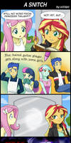 A SNITCH by uotapo