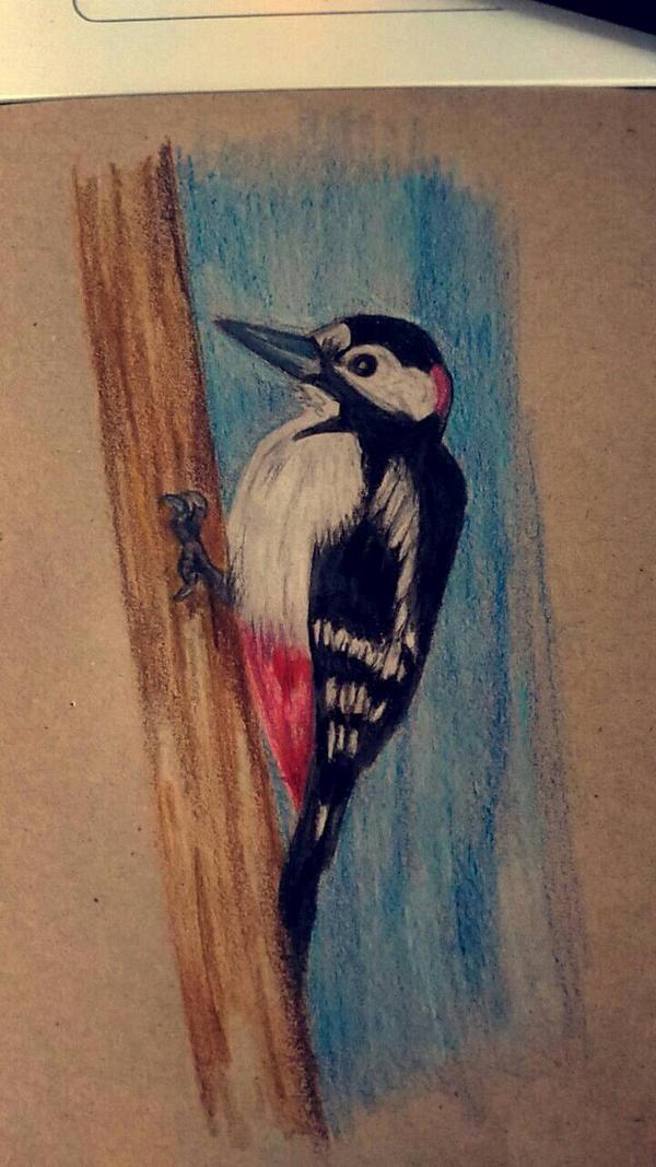 Woodpecker by SzczypioRak