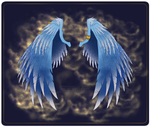 Raffle Prize: Custom Wings