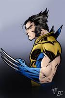 Wolverine Colours (Kid-Destructo) by loquatorious