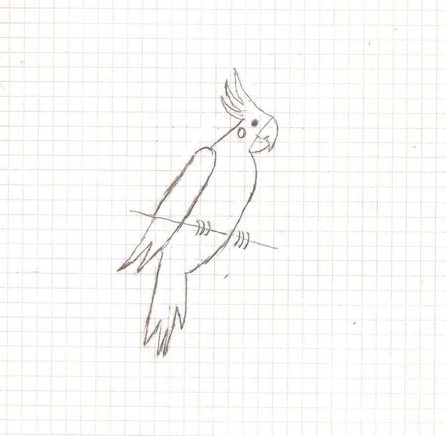 cockatiel sketch by MexicanSkull