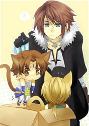Dissidia FF- Adopt a hero by meru-chan