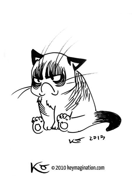 Grumpy Cat 06 2013 by Keymagination on DeviantArt