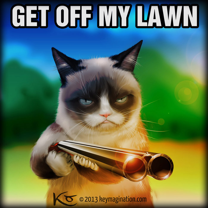 Grumpy Cat Get Off My Lawn 2013 By Keymagination On DeviantArt