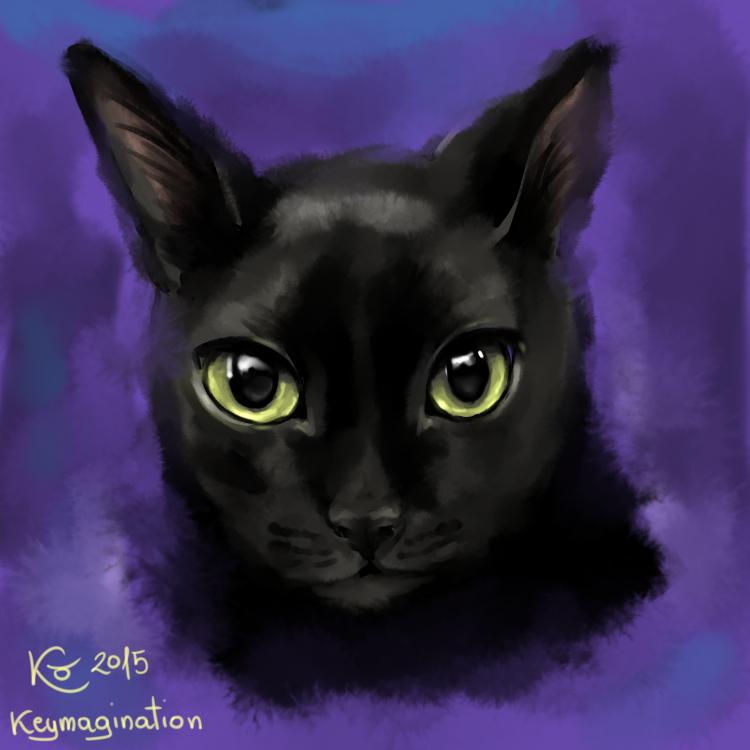 Jack cat s2015 by Keymagination