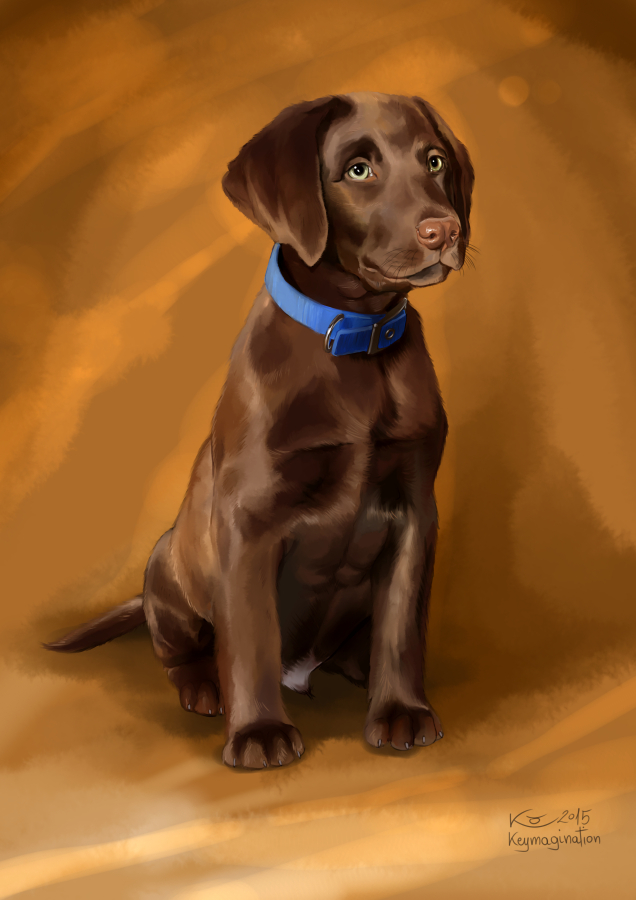 Brown Puppy 2015 by Keymagination