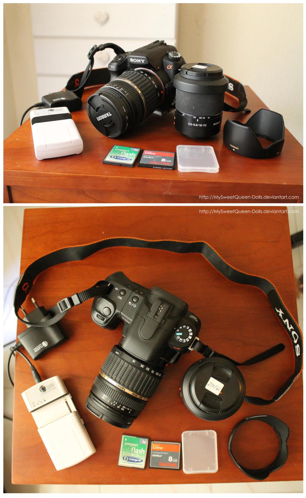 My Reflex Camera (Sold) by MySweetQueen-Dolls