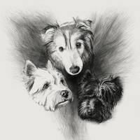 Fur baby commission