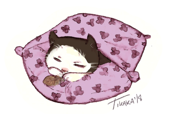 Pillow kitty by Scethdra