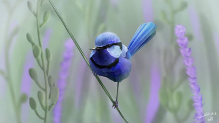 Blue Wren Painting