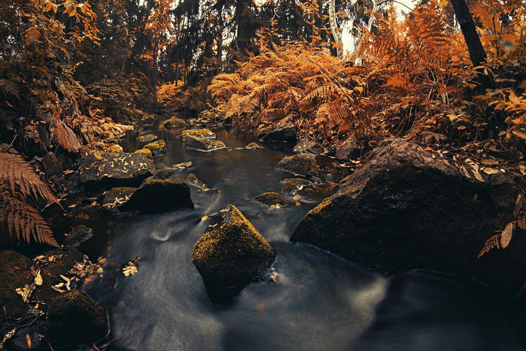 Autumn stream by Thunderi