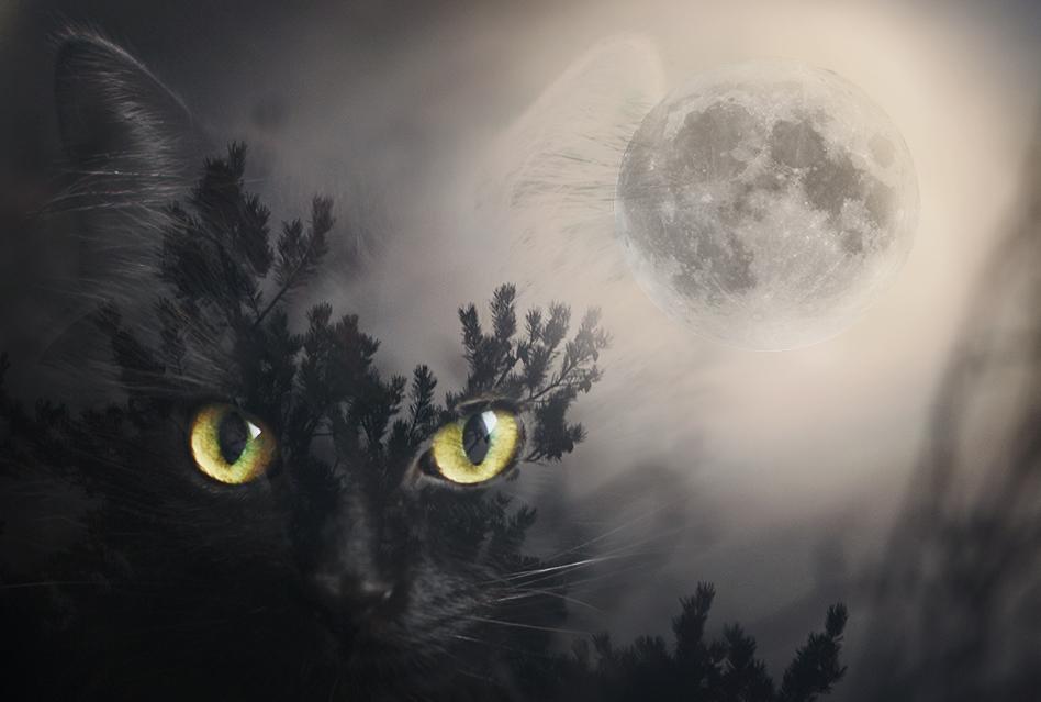 Mystic moon by Thunderi