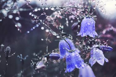 Raindrops by Thunderi