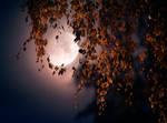 October moon.