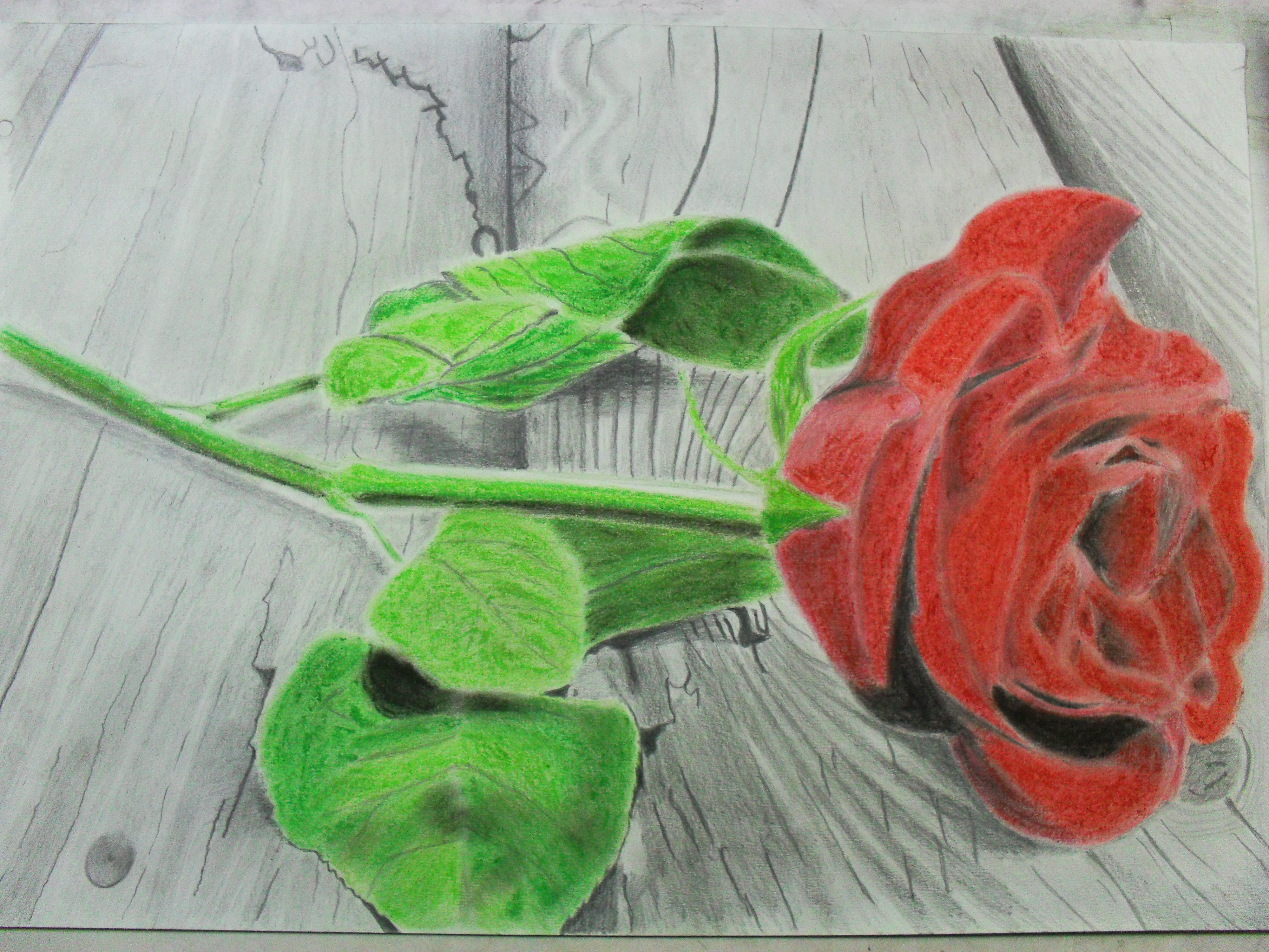 Dibujando una rosa drawing a rose by lostinlove2277 on - Como secar una rosa ...
