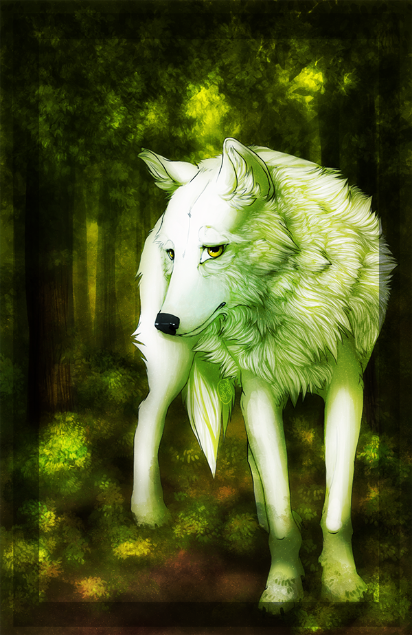 wolf's rain: what paradise allows by acrei