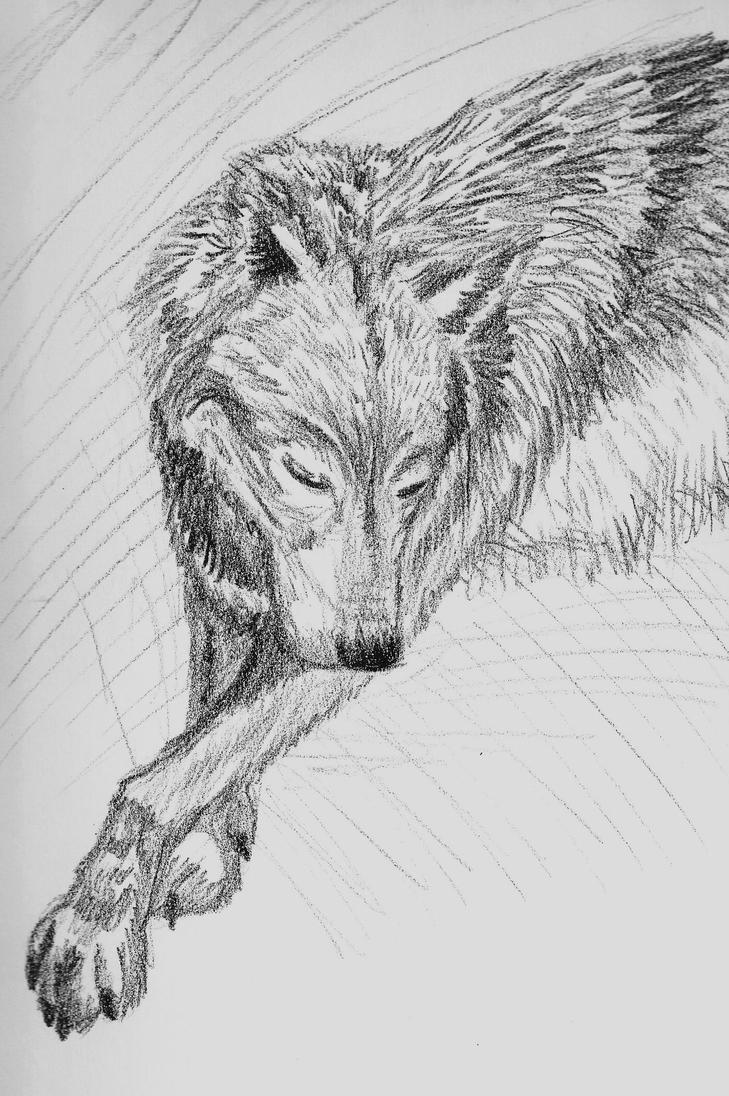 A Wolf's Prayer by MelmelDraws
