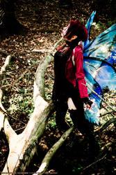 'Autumn Faerie' D