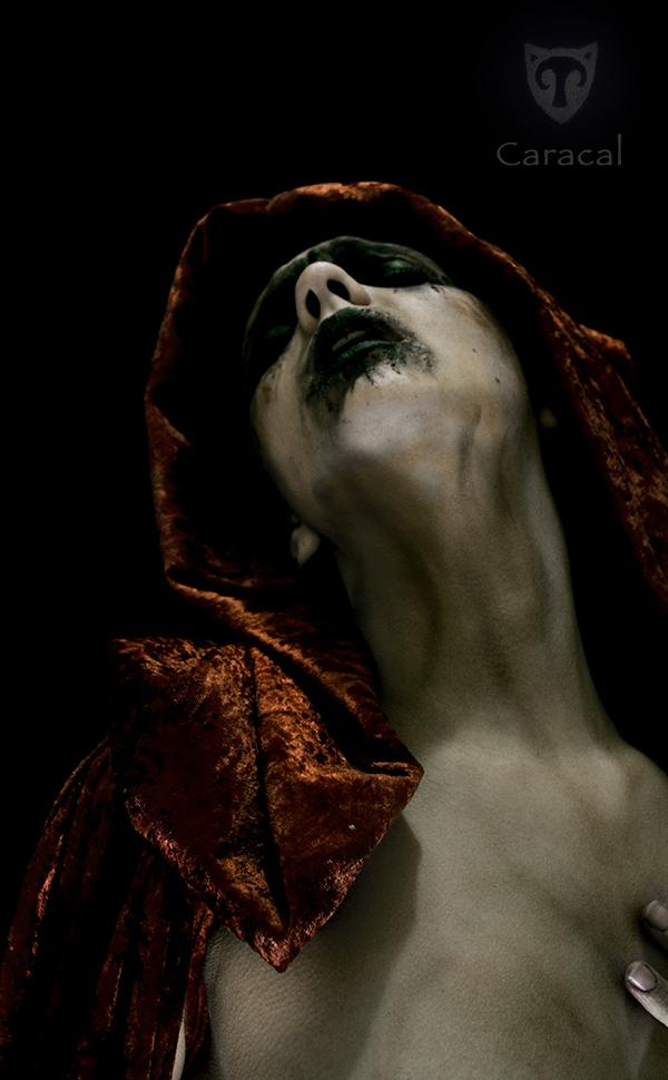 My Edit - Sleak by Caracal by IanStruckhoff