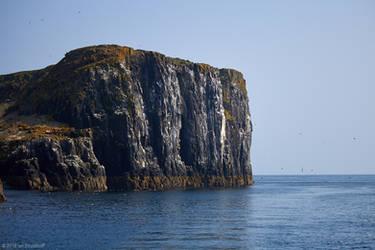 Isle of May - 20 by IanStruckhoff