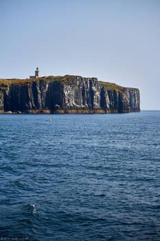 Isle of May - 26