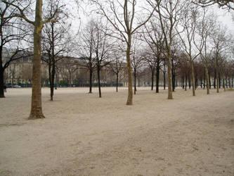 Parisian Tumbleweed by fuzzpooh