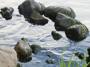 Water and Rocks [STOCK]