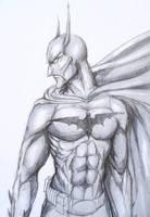 Batman-The Dark Knight by onCue5