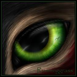 Runninggrass Eye-Con by BloodyMoonLady
