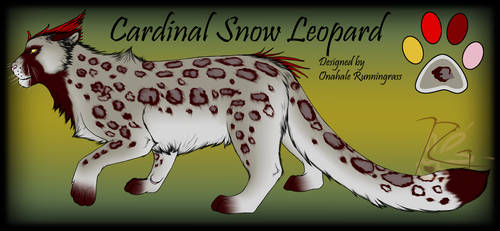 Cardinal Snow Leopard Hybrid Design for Taravia by BloodyMoonLady
