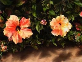 Magic flowers by svet-svet