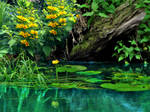 Pond. BG