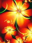 Marigold by svet-svet