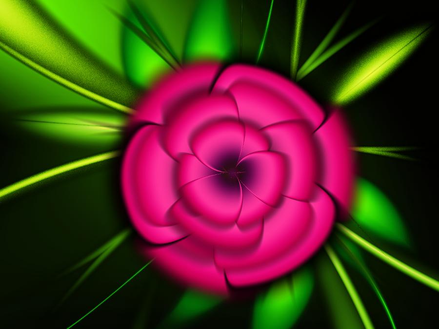 Wild Rose by svet-svet