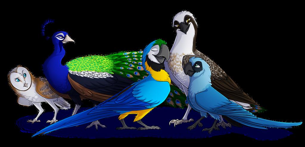 My favorite bird species by nairasanches on deviantart for Birdhouse types