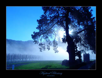 Mystical Blessing by reincarnation